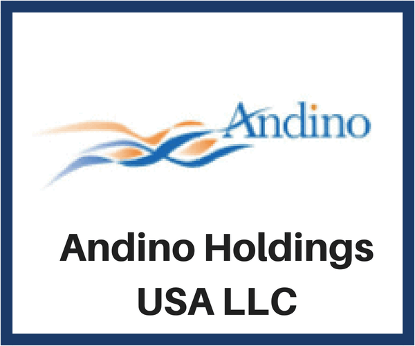 Andino Holdings USA LLC