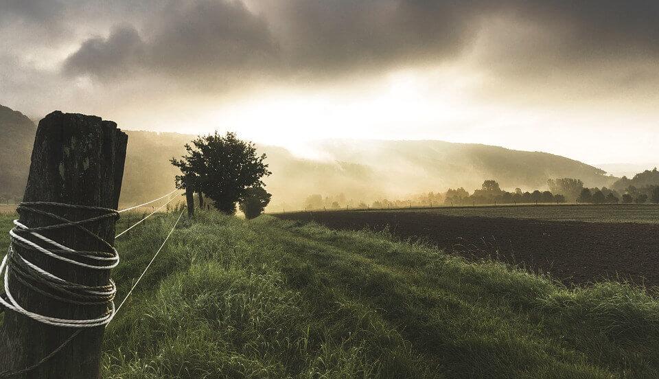 Agricultura en Latinoamérica – ¿Qué Puede Esperar el Mercado Australiano?