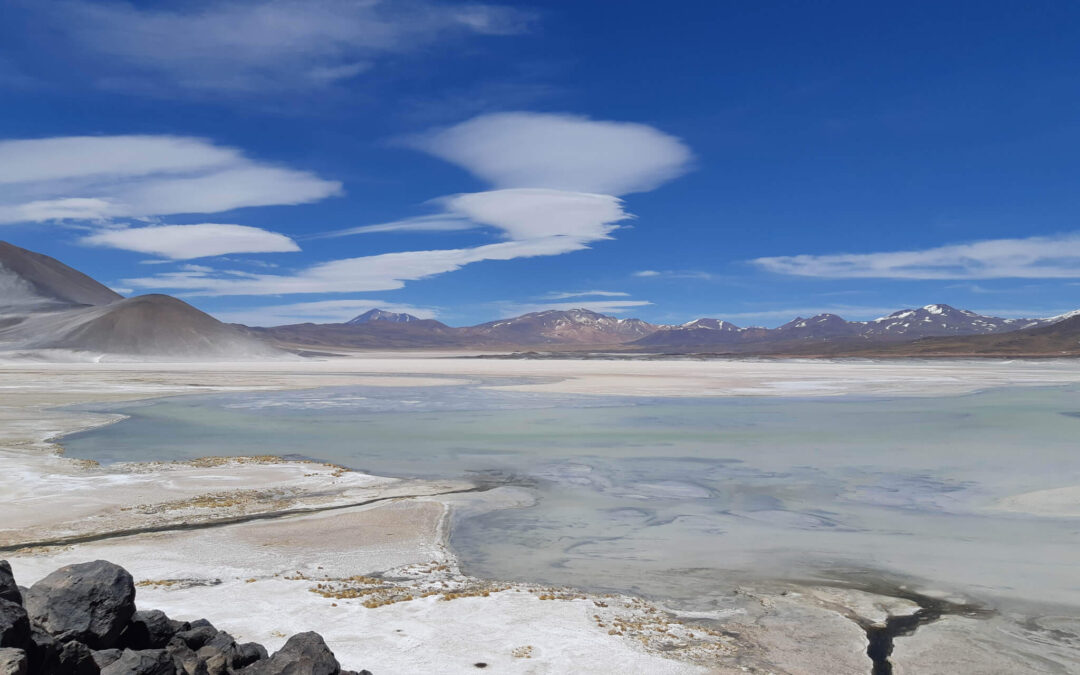 5 Great Reasons to Incorporate a Company in Chile
