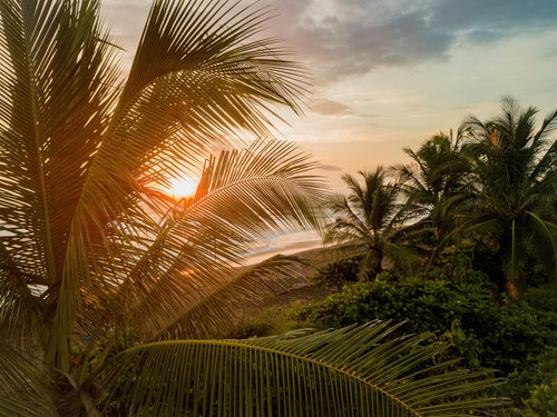 5 Key Reasons to Expand Your Business to Costa Rica