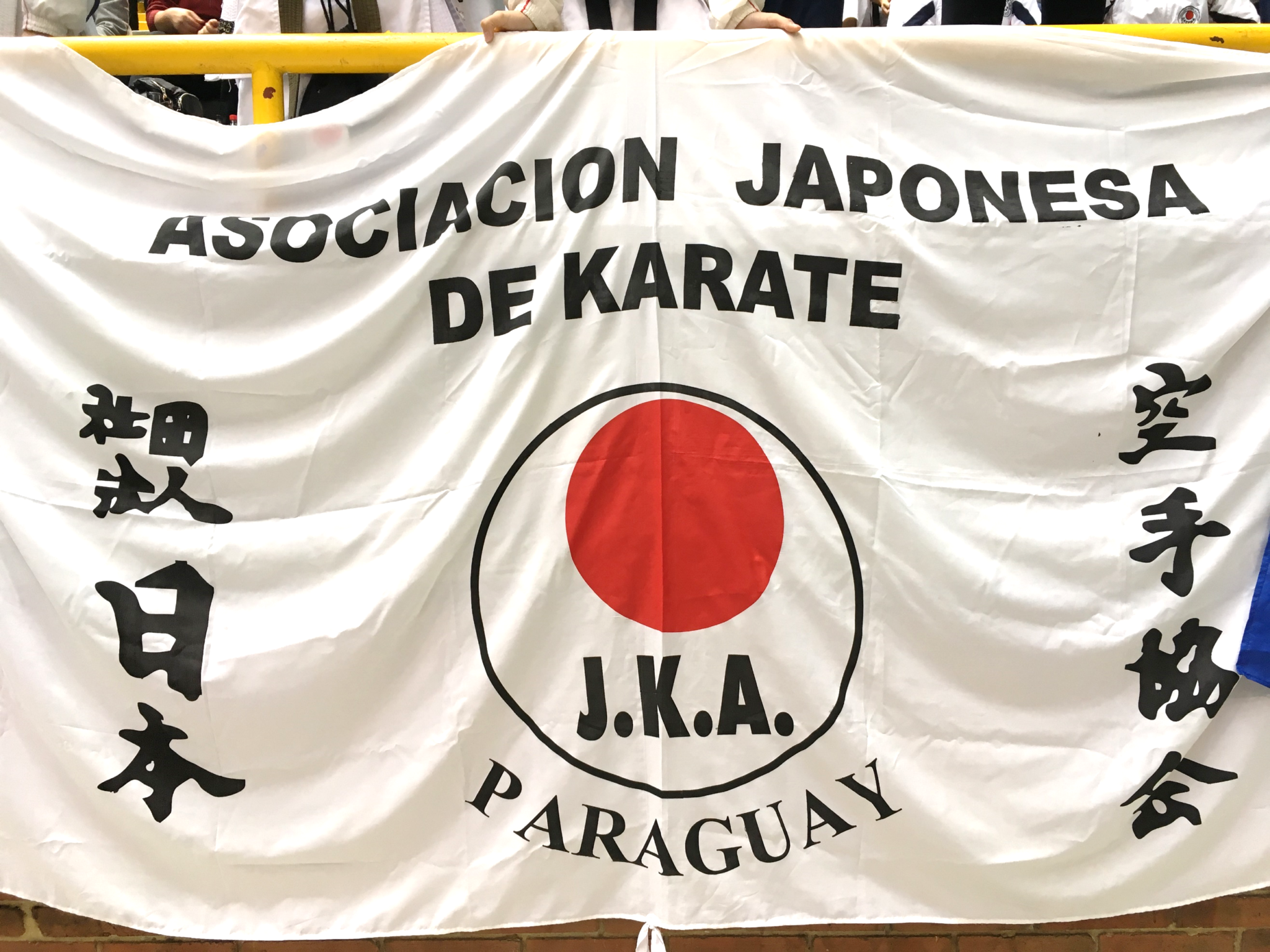 Panamerican Championships: the Evolution of LATAM Karate